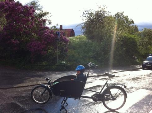 lådcykel på två hjul från holland