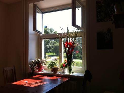 vitabergsparken och röda blommor